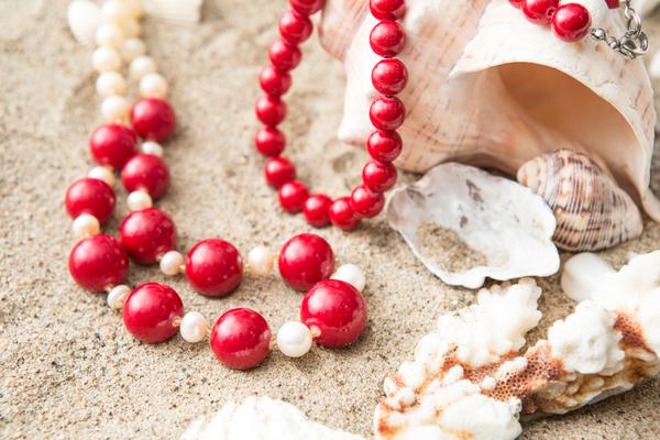 珊瑚(コーラル)について徹底解説|古くから愛された石の特徴や効果
